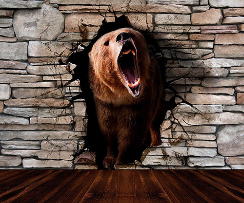 3D Bear from the wall