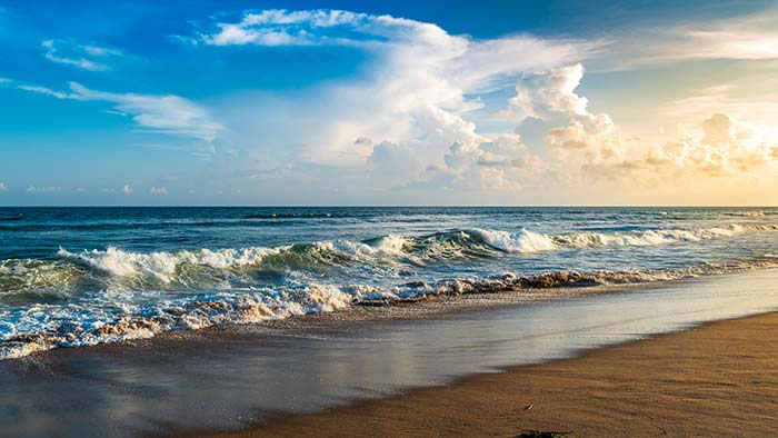 Waves by Shore