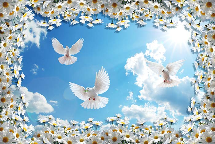 White flower in sky with Birds