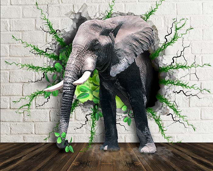 Elephant in the vines