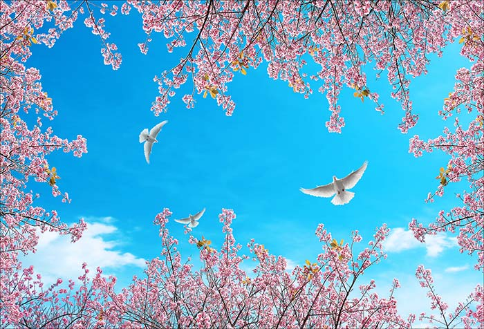 Pink Small Plants with Birds in Sky