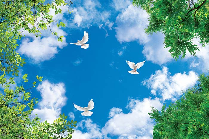 Clouds in sky with birds