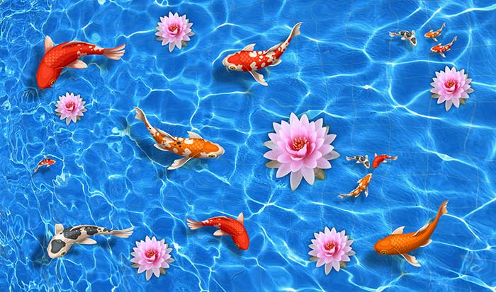 Lotus and Fishes