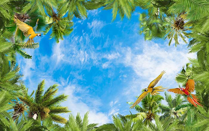 Parrots with plants and sky view