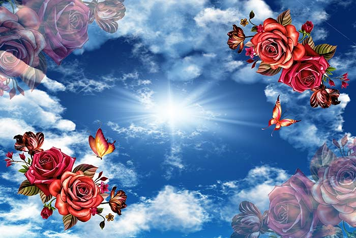 Red Roses with sun and clouds