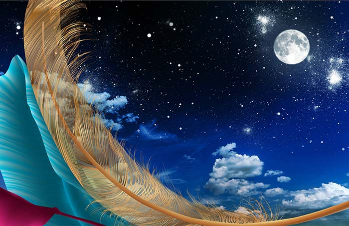 Moon and feather with night sky