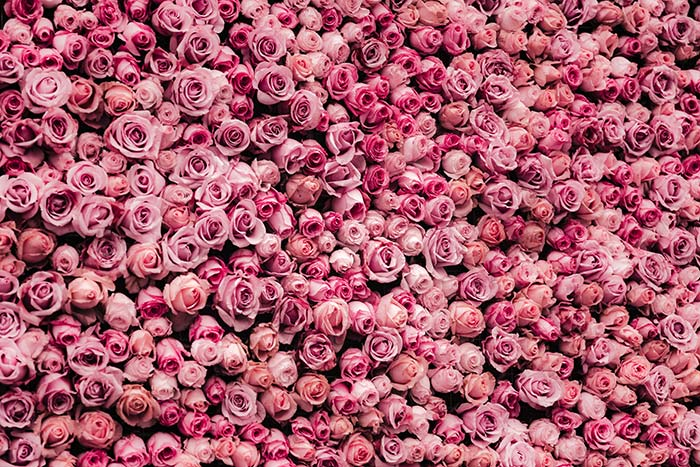 Bunch O Roses